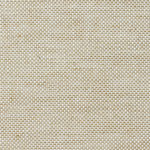 Rough Beige Fabric
